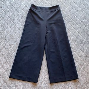Express high waisted cropped pant side zip